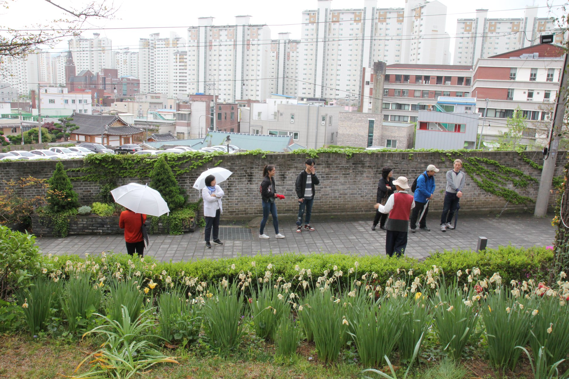 People with umbrellas stand in front of brick wall with plants in foreground and city skyline behind them